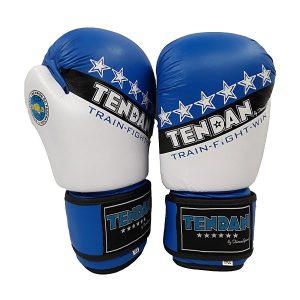 TEN DAN BOXING GLOVES LEATHER APPROVED E.I.T.F. 10oz | BOXING GLOVES 10oz. APPROVED NEW DESIGN LEATHER